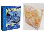 Shoppers borsa in pvc manici cotone cm. 26+8,3x34 pz.2