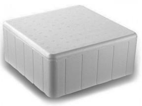 Scatola termica in polistirolo interno cm. 30x30x13