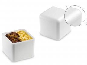 Scatola a cubo termica in polistirolo interno 9x9 h.8,5