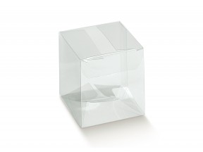 Scatola trasparente mm 50x50x80