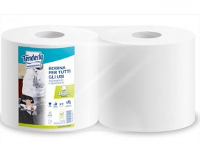 Bobine carta asciugatutto ecologica 2 veli 760 strappi 2 rotoli