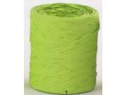Nastro polyrafia verde chiaro in bobina mt.200 mm.15