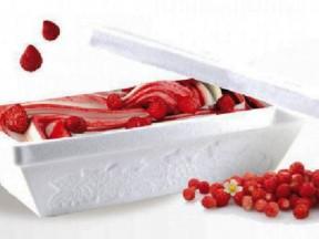 Contenitore termico per gr. 500 di gelato interno cm.18x10 h.7,5