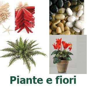 Packaging online scatole buste carta e nastri for Fiori e piante online